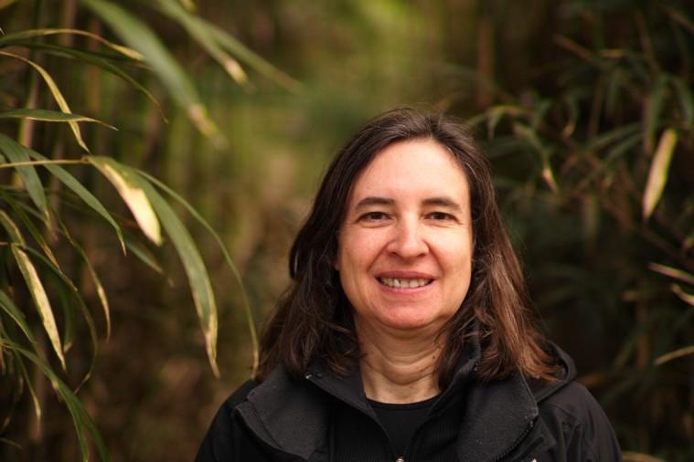 Birgit Pohl-johann